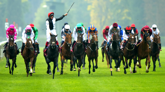 GB Horseracing Services Horseracing Syndicates